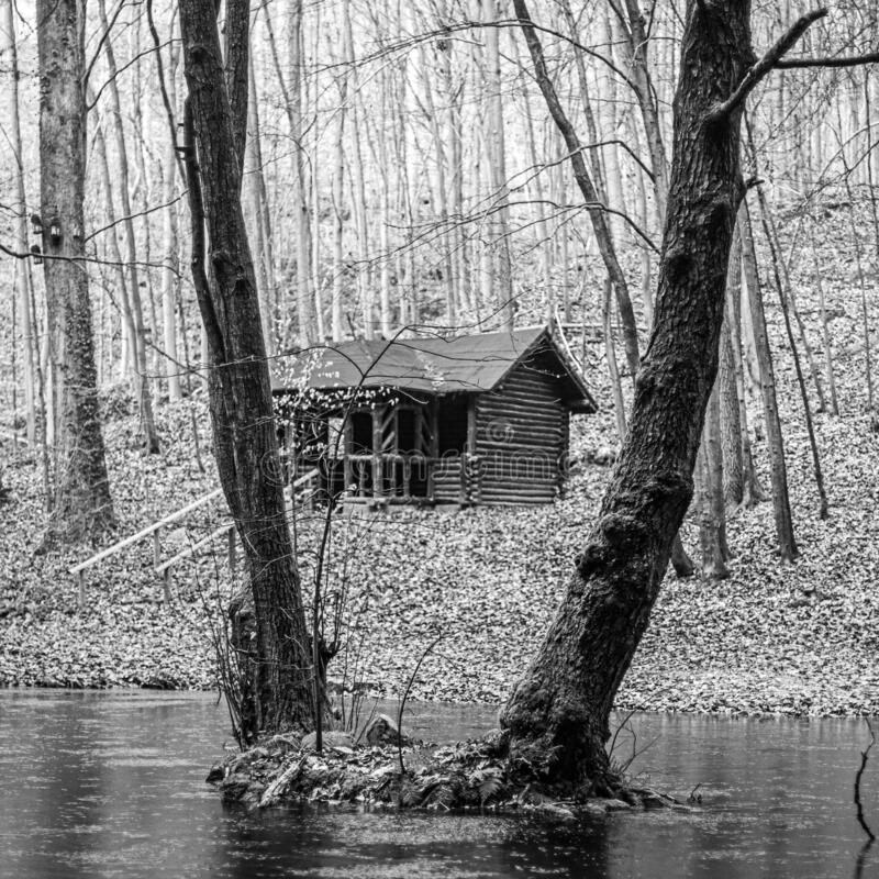 cabin in the calm and peaceful forest stock photography