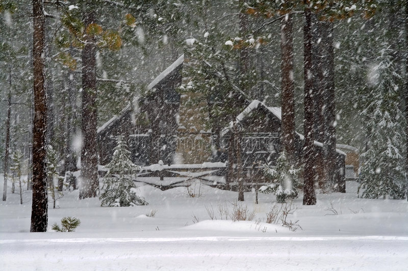 Cabin in the forest stock photography