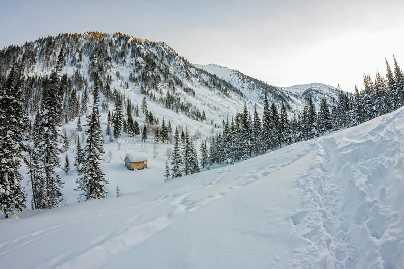 Cabin house chalets in winter forest with snow.  stock photography