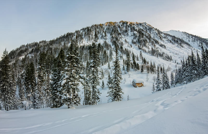 Cabin house chalets in winter forest with snow.  stock image