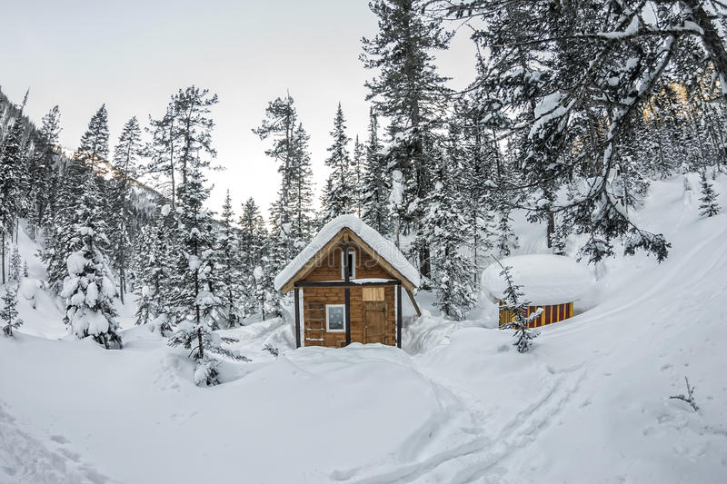 Cabin house chalets in winter forest with snow.  royalty free stock photo