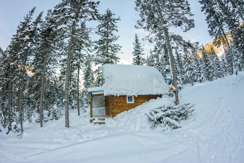 Cabin house chalets in winter forest with snow.  royalty free stock images