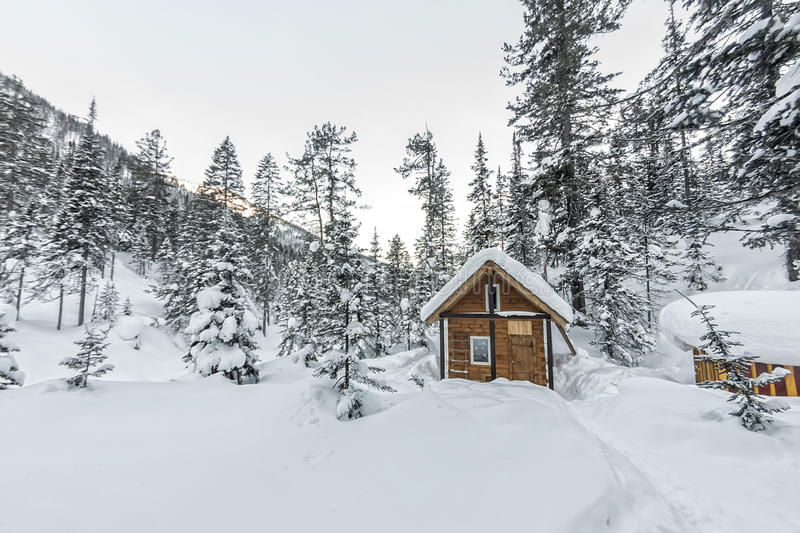 Cabin house chalets in winter forest with snow.  royalty free stock photos