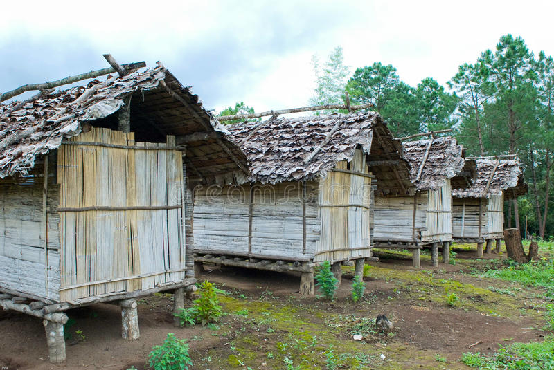 Download Cabin in thai forest stock photo. Image of traditional - 22722306