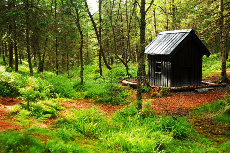 Cabin in woods. A small cabin in the woods royalty free stock photos