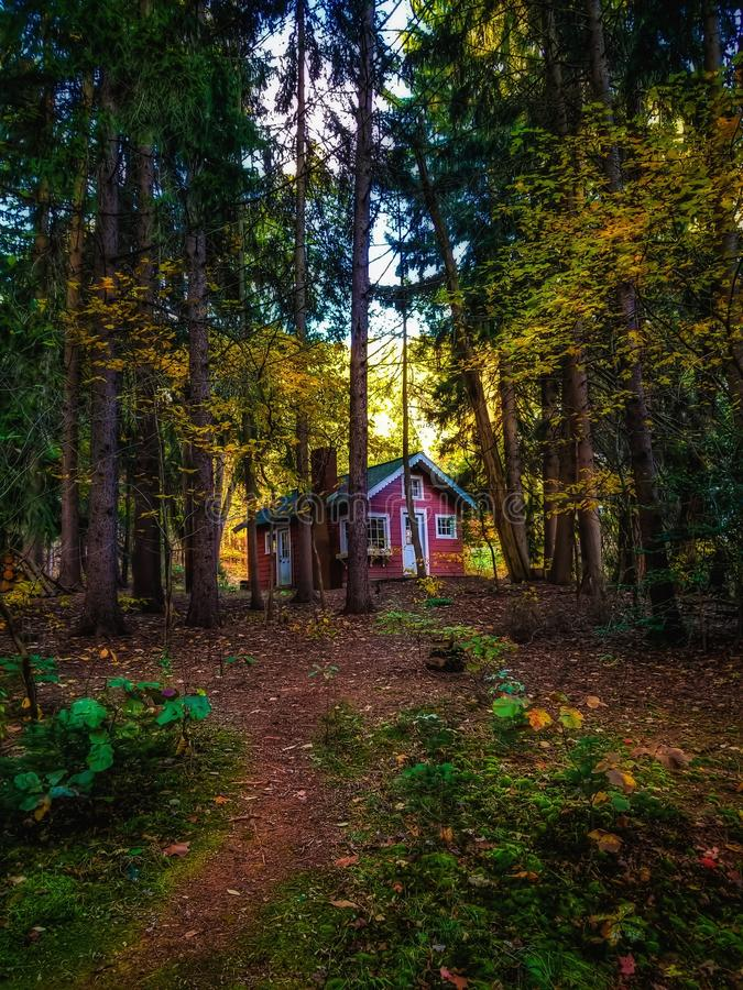 A cabin in the woods stock photography