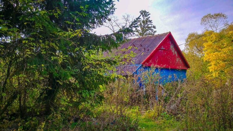 Cabina de madera colorida en el bosque fotos de archivo