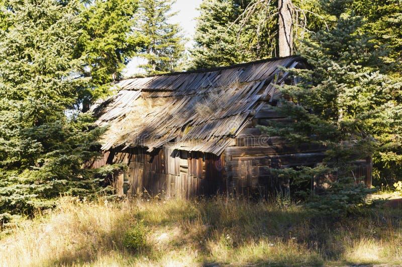 Cabina di ceppo abbandonata nel legno immagini stock libere da diritti
