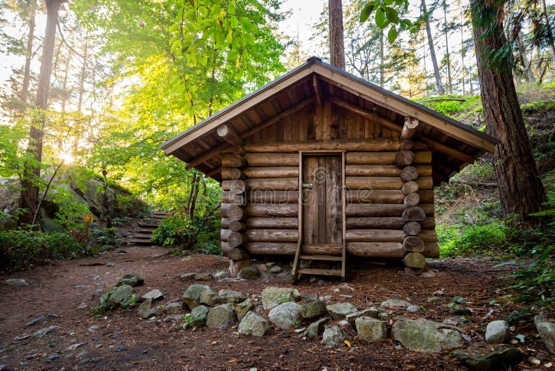 Cabina di ceppo in una foresta di estate nel parco del faro immagini stock