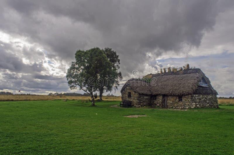 Cabina e un albero sul campo di battaglia fotografia stock libera da diritti