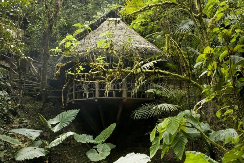 Cabina nel Ecuadorian Cloudforest immagine stock