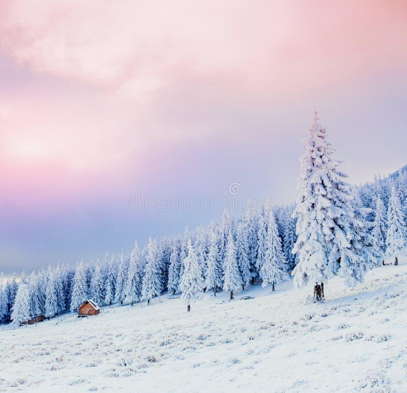 Cabina nelle montagne nell'inverno Carpatico, Ucraina, Europa fotografia stock