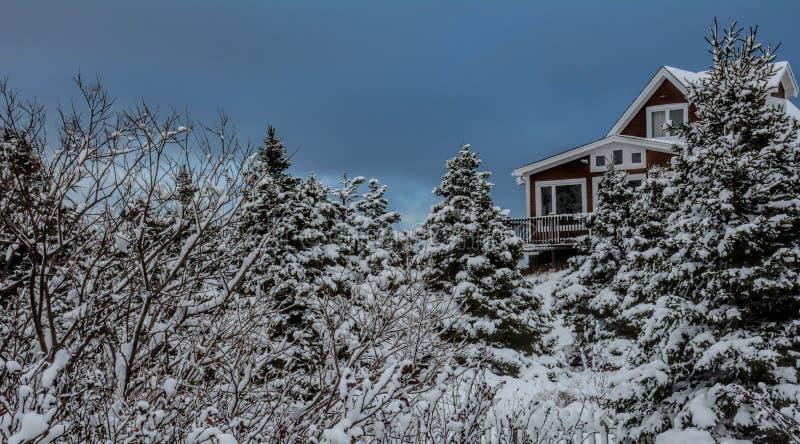 Cabina rústica en bosque, Avalon Peninsula en Terranova, Canadá imagen de archivo
