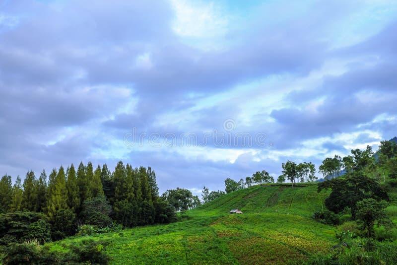 Cabina vieja en la colina de la granja con sobre todo nublado fotos de archivo libres de regalías