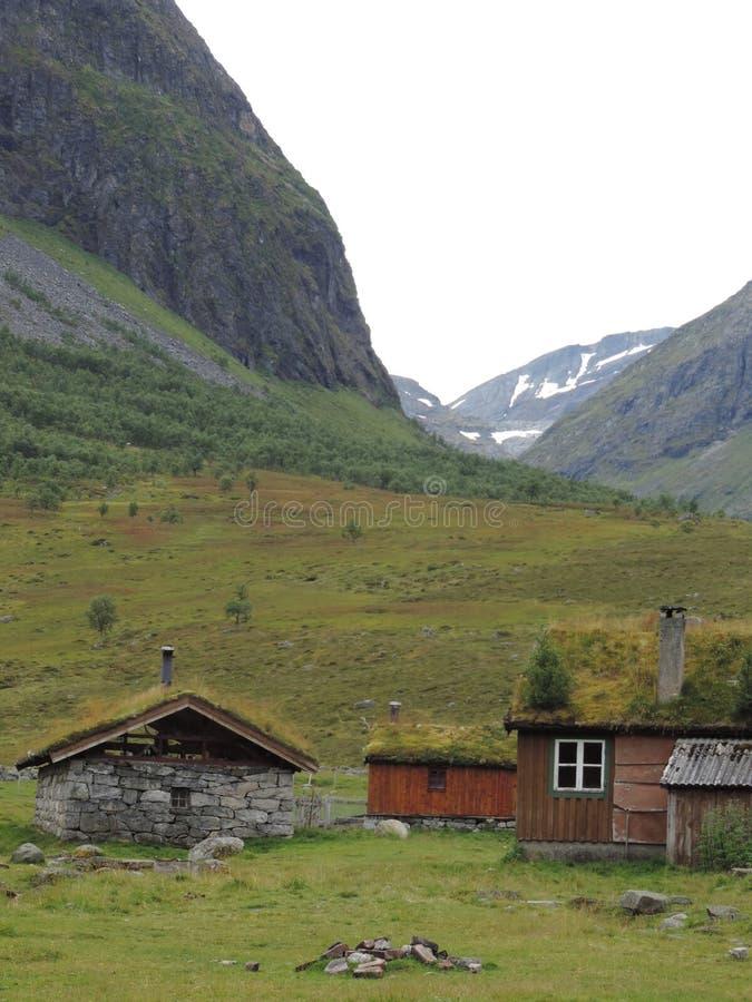 Cabinas del tejado del césped en Geiranger, Noruega foto de archivo