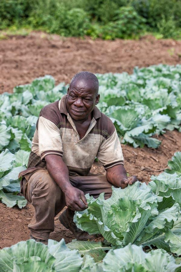 CABINDA/ANGOLA - 9 de junio de 2010 - retrato del granjero rural africano Cabinda angola imagenes de archivo