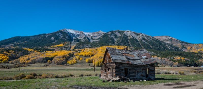 Cabine abandonada em Gunnison County Colorado fotos de stock