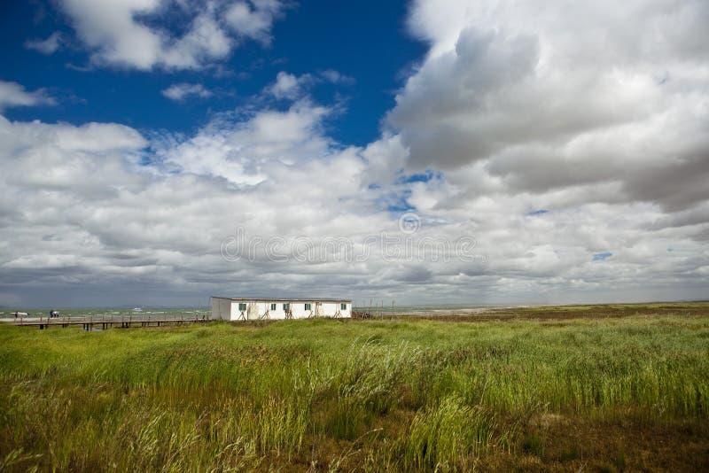 Cabine dans la prairie photo libre de droits