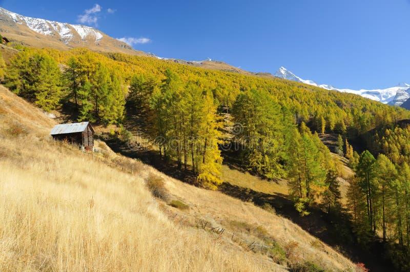 Cabine dans un pré de montagne photo libre de droits