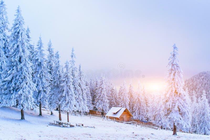 Cabine in de bergen in de winter royalty-vrije stock foto's
