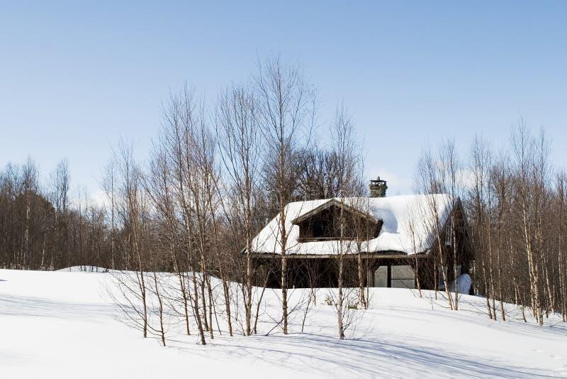Cabine de forêt de l'hiver photographie stock