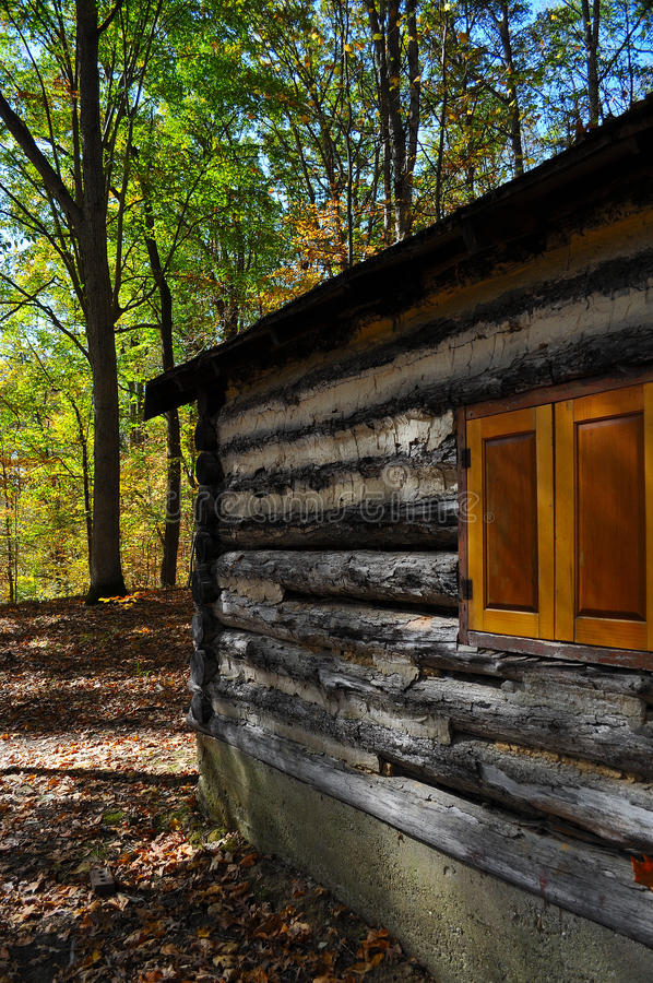 Cabine de logarithme naturel dans la forêt photos libres de droits