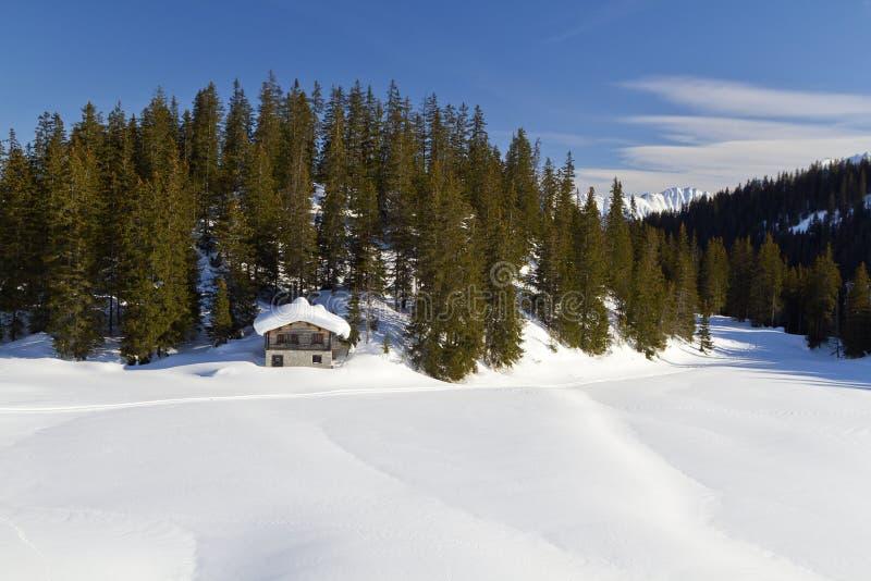 Cabine de logarithme naturel dans la neige photos stock