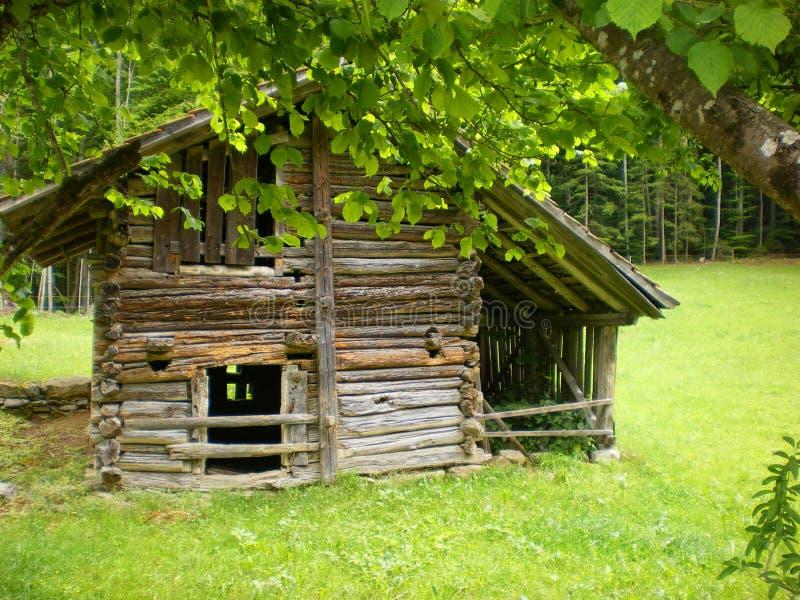 cabine de logarithme naturel de nature Ballenberg image libre de droits