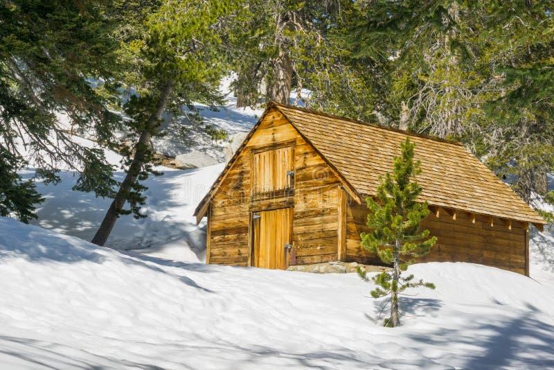 Cabine de madeira travada na montagem San Jacinto, San Bernardino National Forest, Califórnia imagem de stock royalty free
