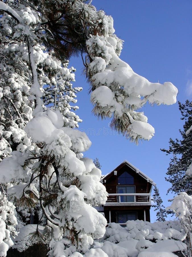 Cabine in de sneeuw stock foto's