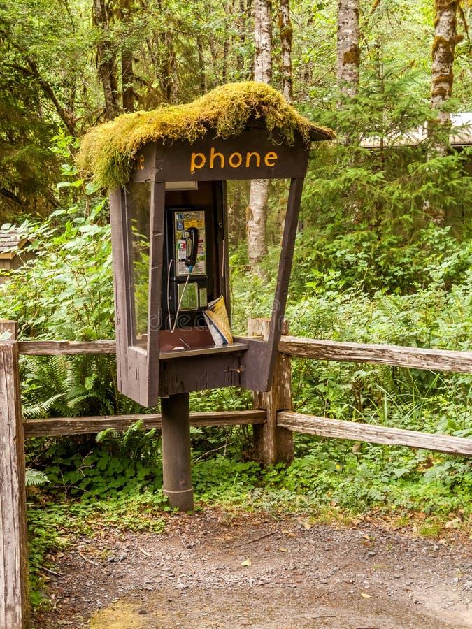 Cabine de téléphone abandonnée dans Hoh Rain Forest photos stock