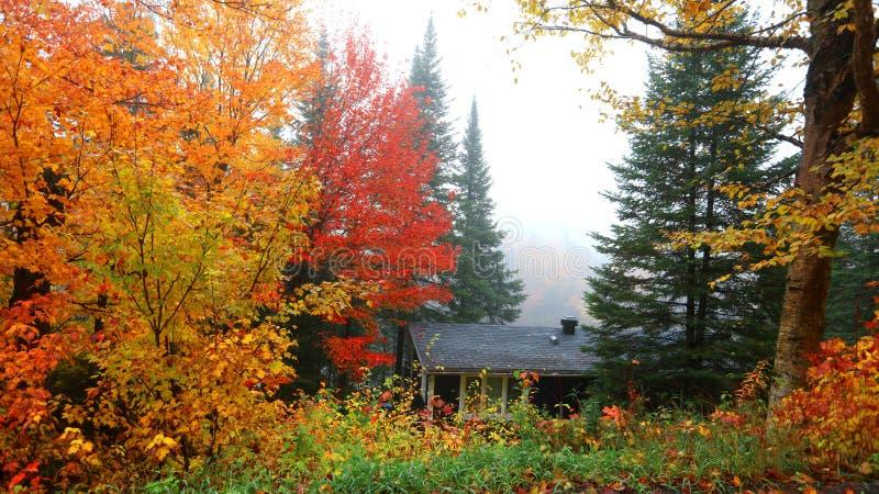 Cabine de vacances au milieu des arbres d'automne photos stock
