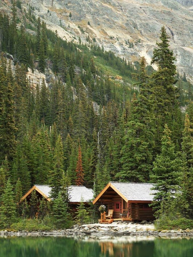 Cabine di legno nel lago o 39 hara yoho national park for Cabina nel noleggio lago tahoe