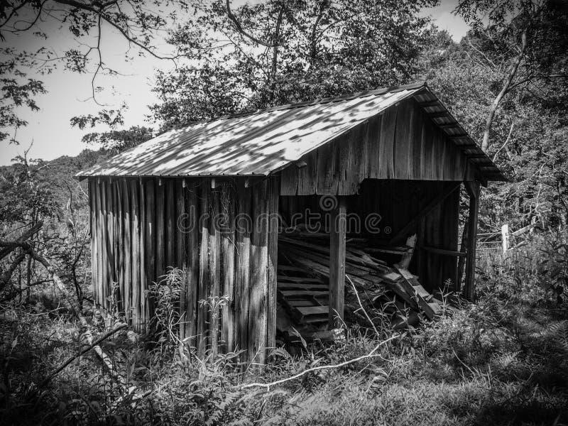 Cabine dilapidada ao longo de Ridge Trail preto foto de stock royalty free
