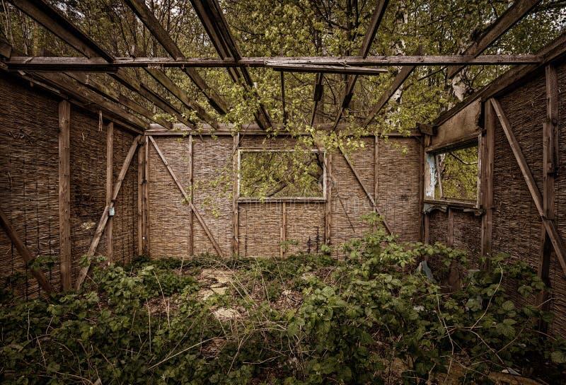 Cabine en bois ruinée, costruction en bois et nature verte photos stock