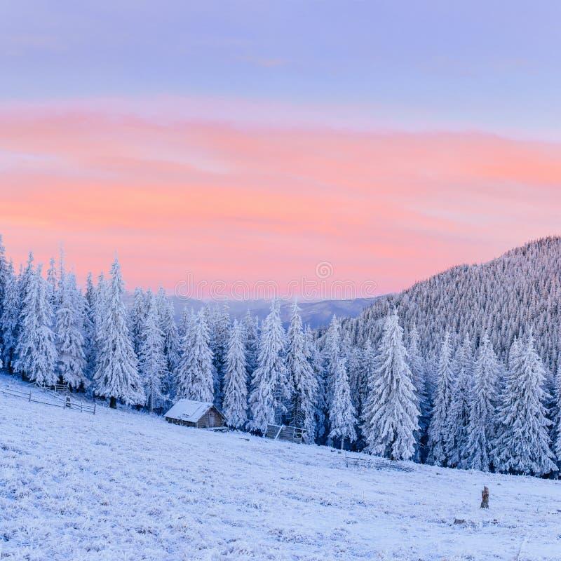 Cabine nas montanhas no inverno fotografia de stock royalty free