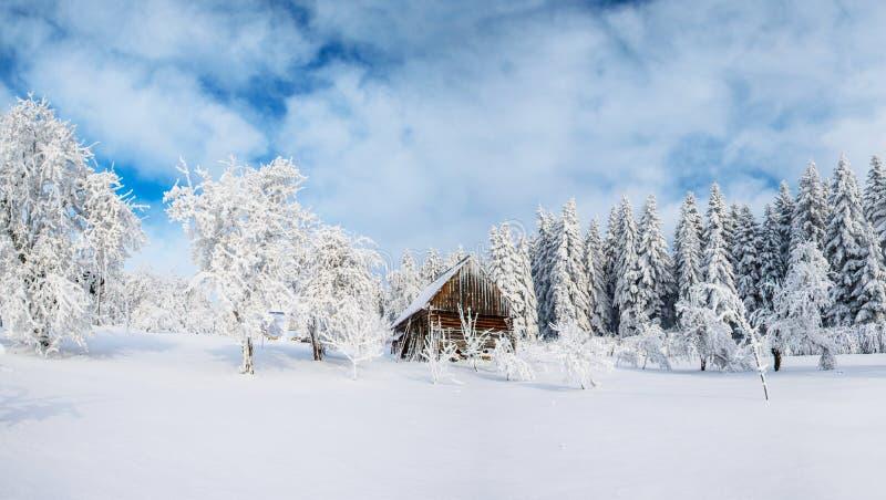 Cabine nas montanhas no inverno Névoa misteriosa Em antecipação aos feriados carpathians Ucrânia, Europa imagens de stock