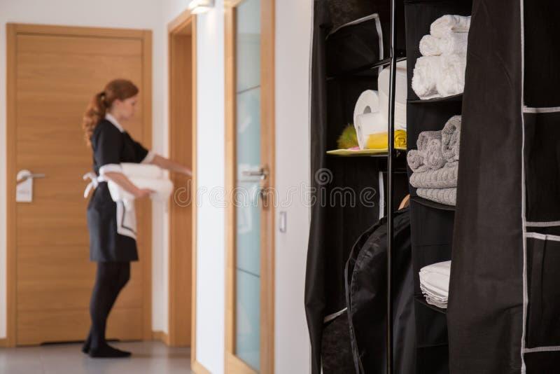 Cabinet avec les articles hygiéniques image libre de droits