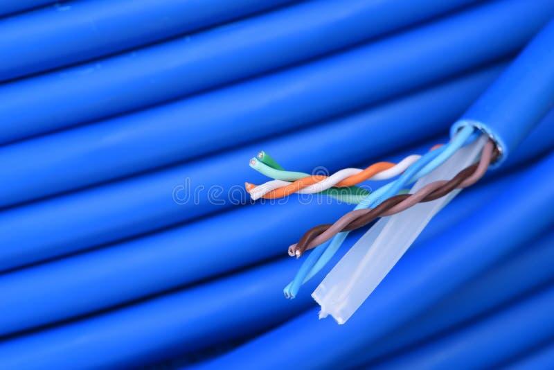 Cable azul del utp del equipo de red fotos de archivo libres de regalías