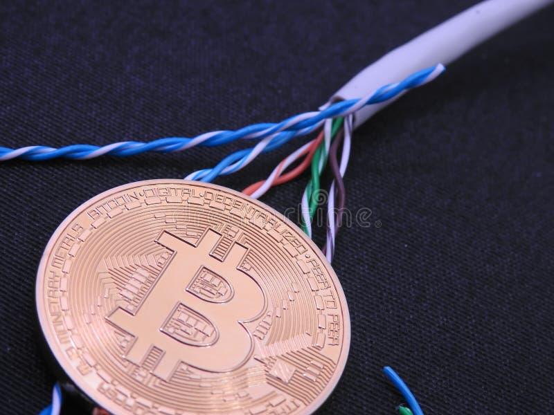 Cable de Bitcoin y de UTP imagen de archivo libre de regalías