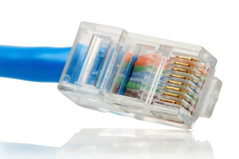 Cable de la red de ordenadores en blanco fotos de archivo libres de regalías