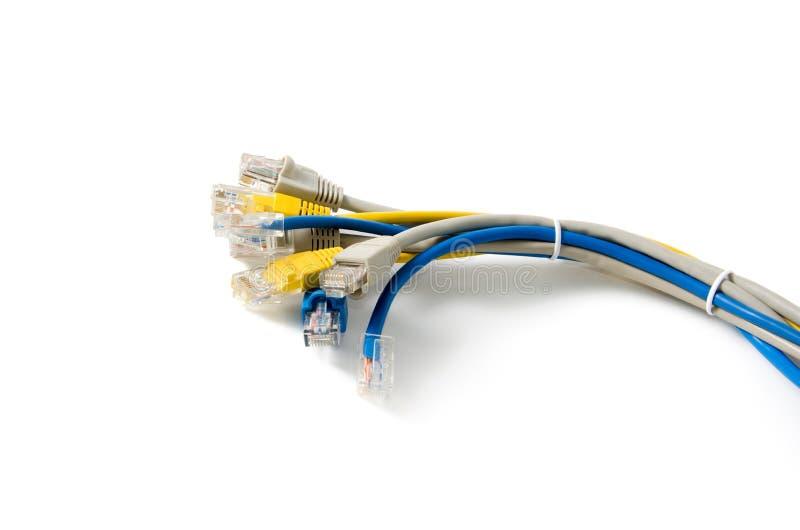 Cable de LAN Network con el conector RJ-45 foto de archivo