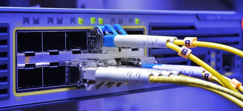 Cables ópticos de la fibra conectados con el centro de datos imágenes de archivo libres de regalías