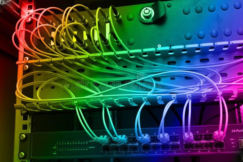 Cables ópticos de la fibra conectados con un interruptor foto de archivo libre de regalías