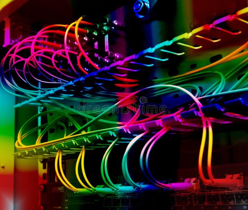 Cables ópticos de la fibra conectados con un interruptor fotos de archivo libres de regalías