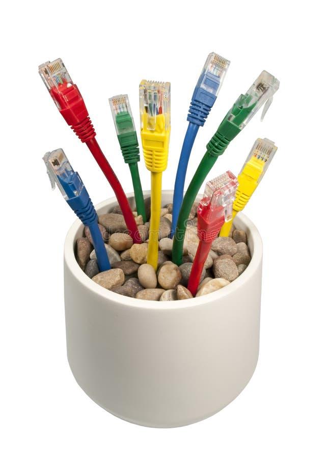 Cables coloreados de la red que crecen en una maceta fotos de archivo libres de regalías