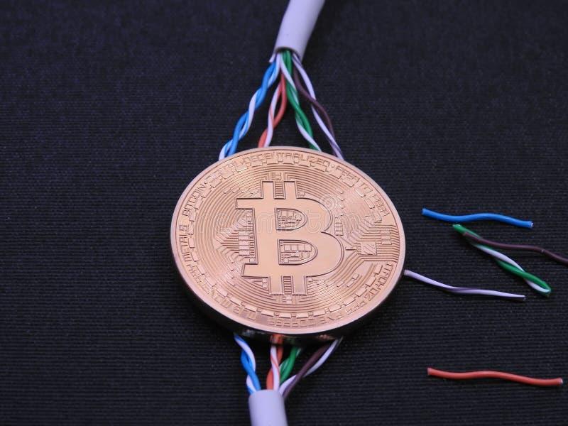 Cables de Bitcoin y de UTP fotografía de archivo