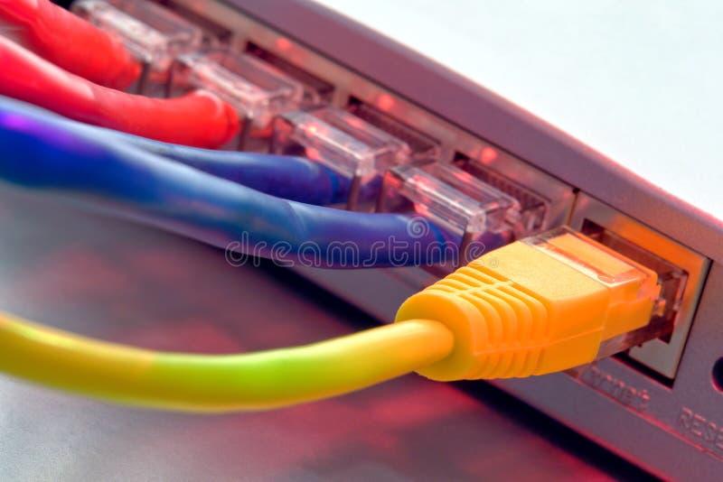 Cables de la red de ordenadores de Ethernet en el ranurador fotos de archivo