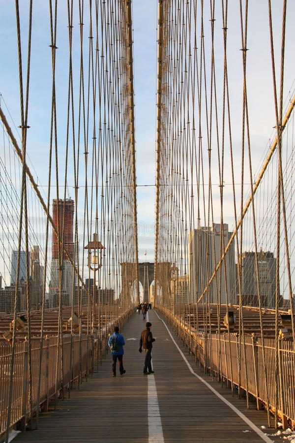 Free Cables Of Brooklyn Bridge Royalty Free Stock Image - 12377956