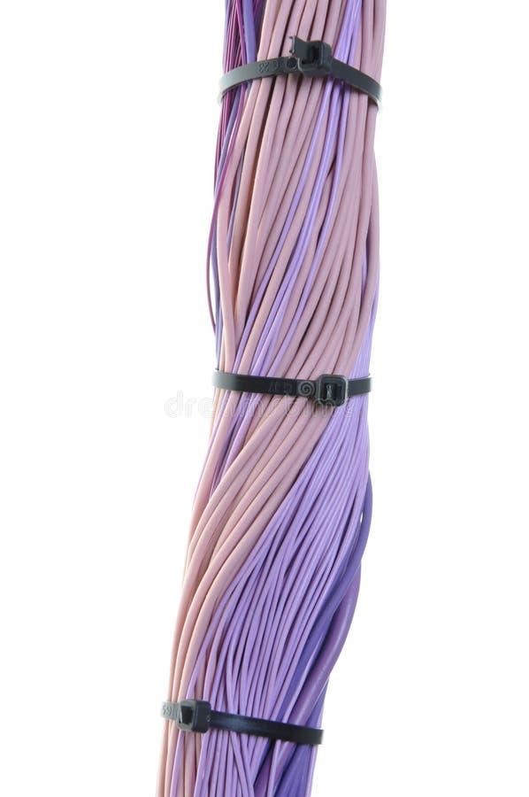 Cables violetas con las bridas de plástico imagenes de archivo